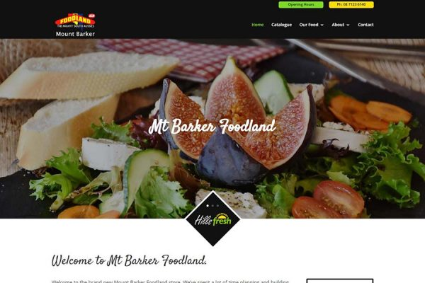 Website Design Adelaide - Slide11